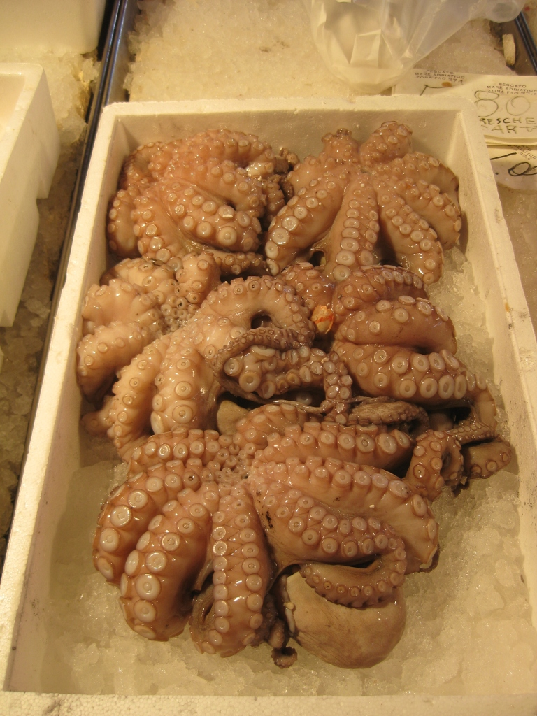 Octopus is one of the many  different types of seafood you'll find at the Rialto Markets