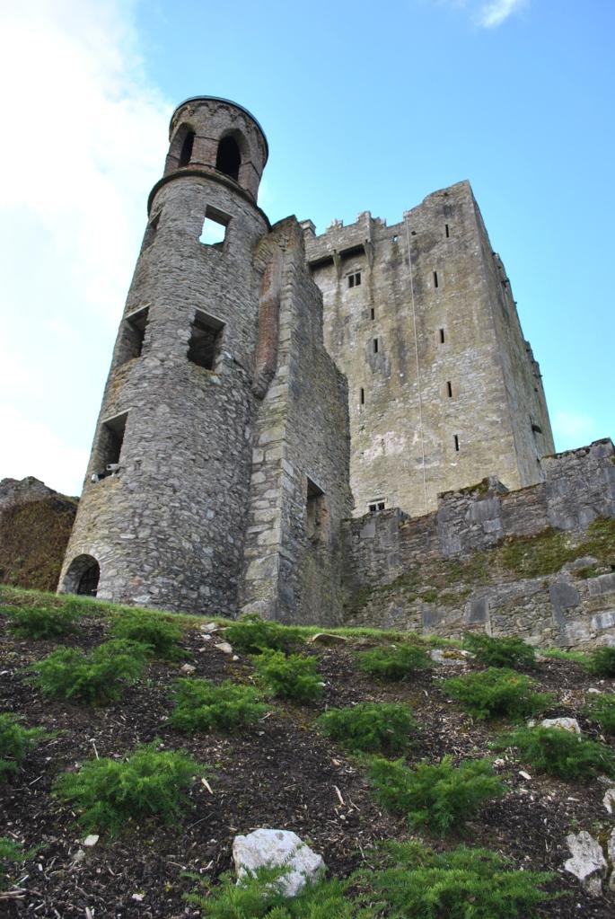 Blarney Castle (97)