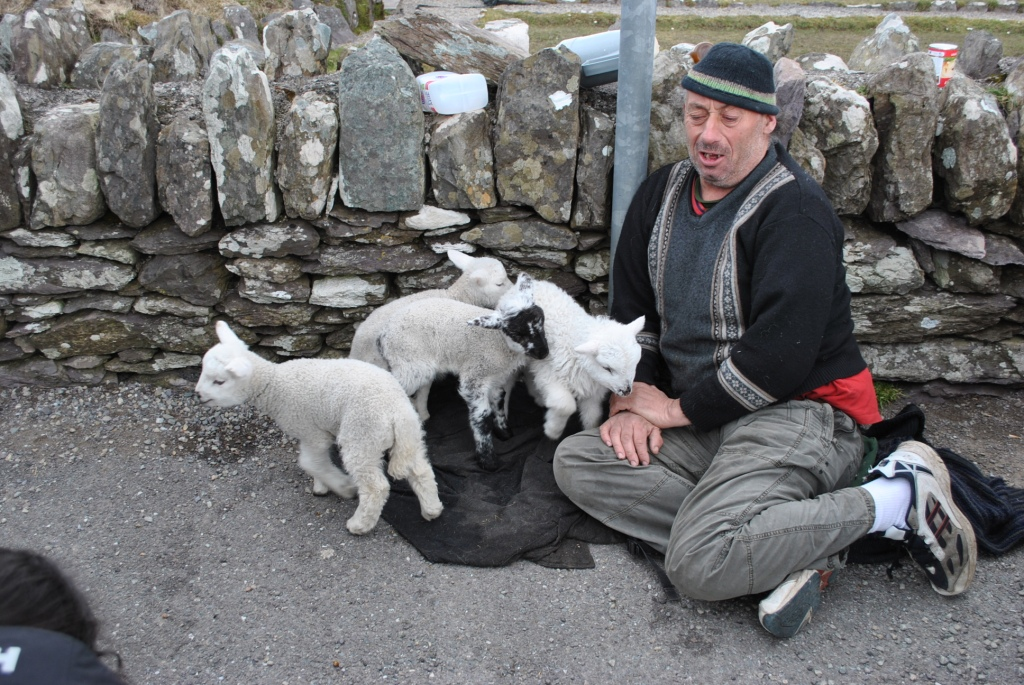 If you tip this guy, you'll get to hold one of the little lambs!