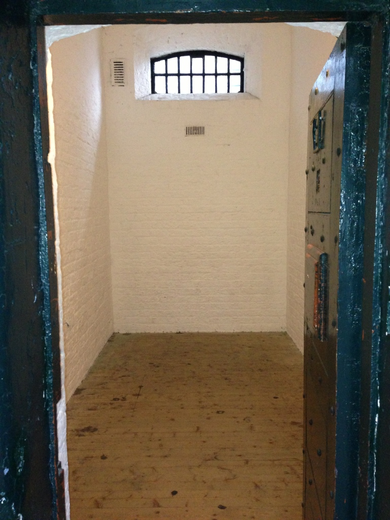 Inside of a cell