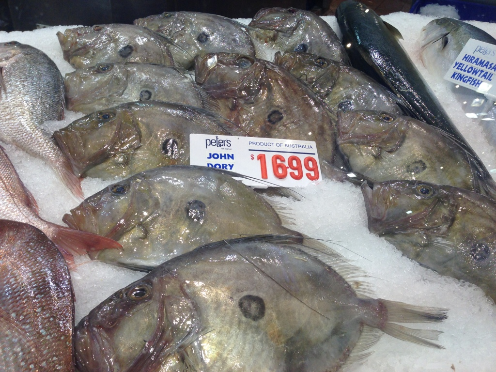 The spot on the John Dory fish tends to confuse its predators