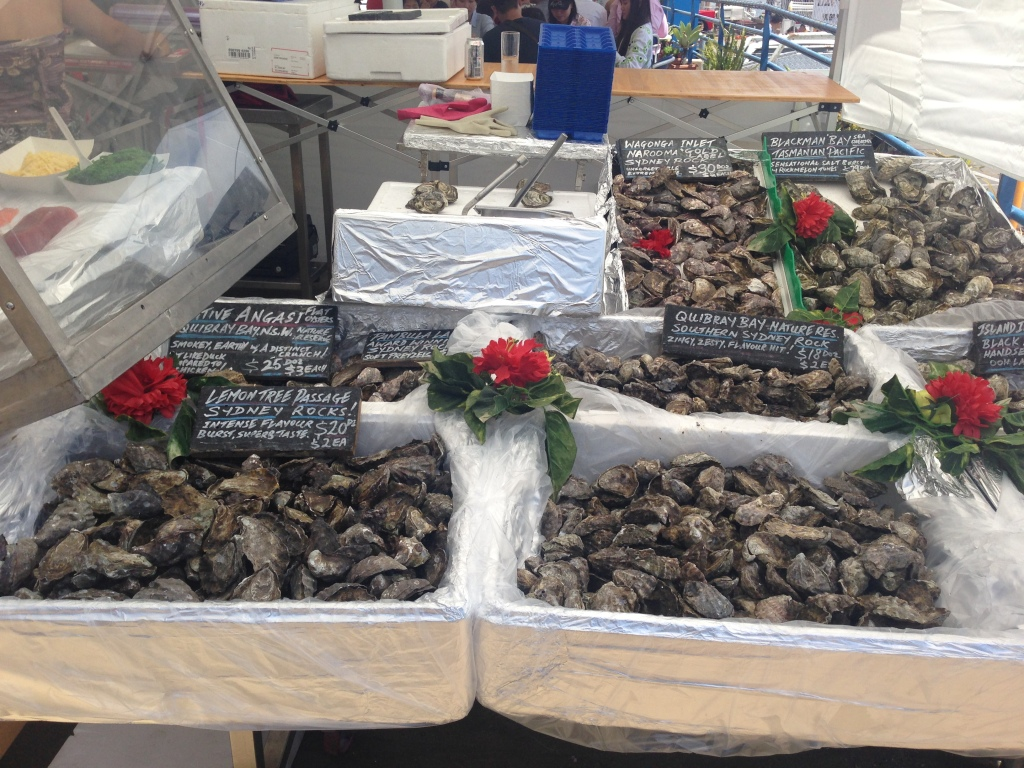 Oysters galore