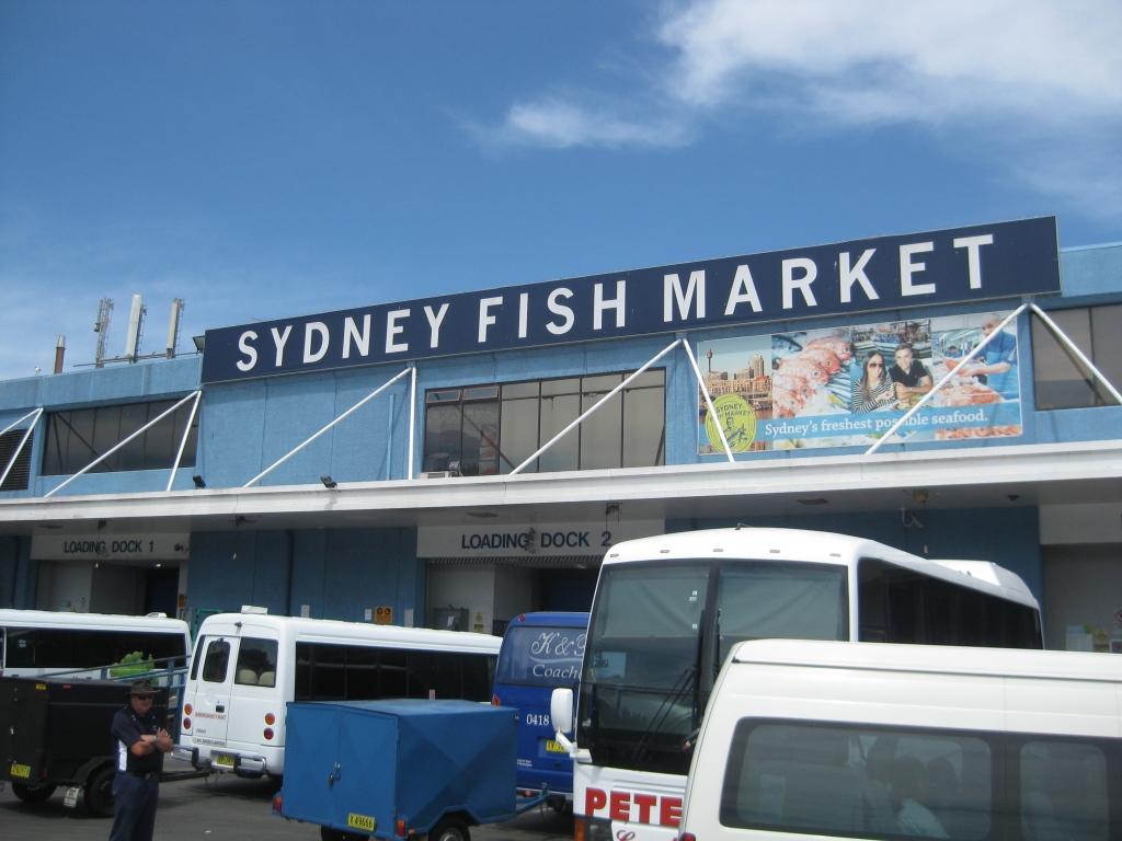 Sydney Fish Market (61)