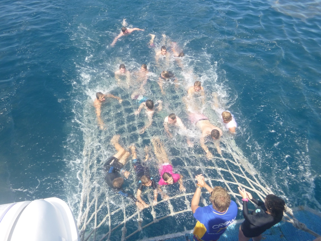 Boom netting on the way back to Cairns