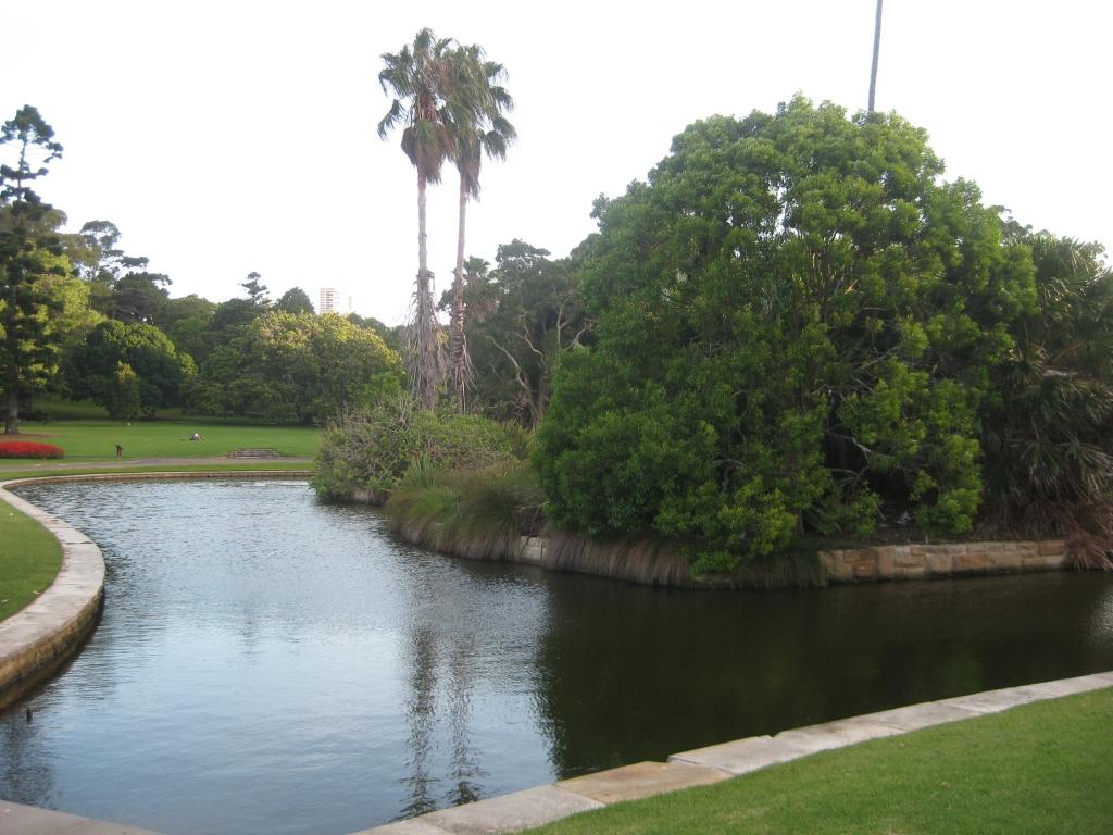 Royal Botanic Gardens (5)