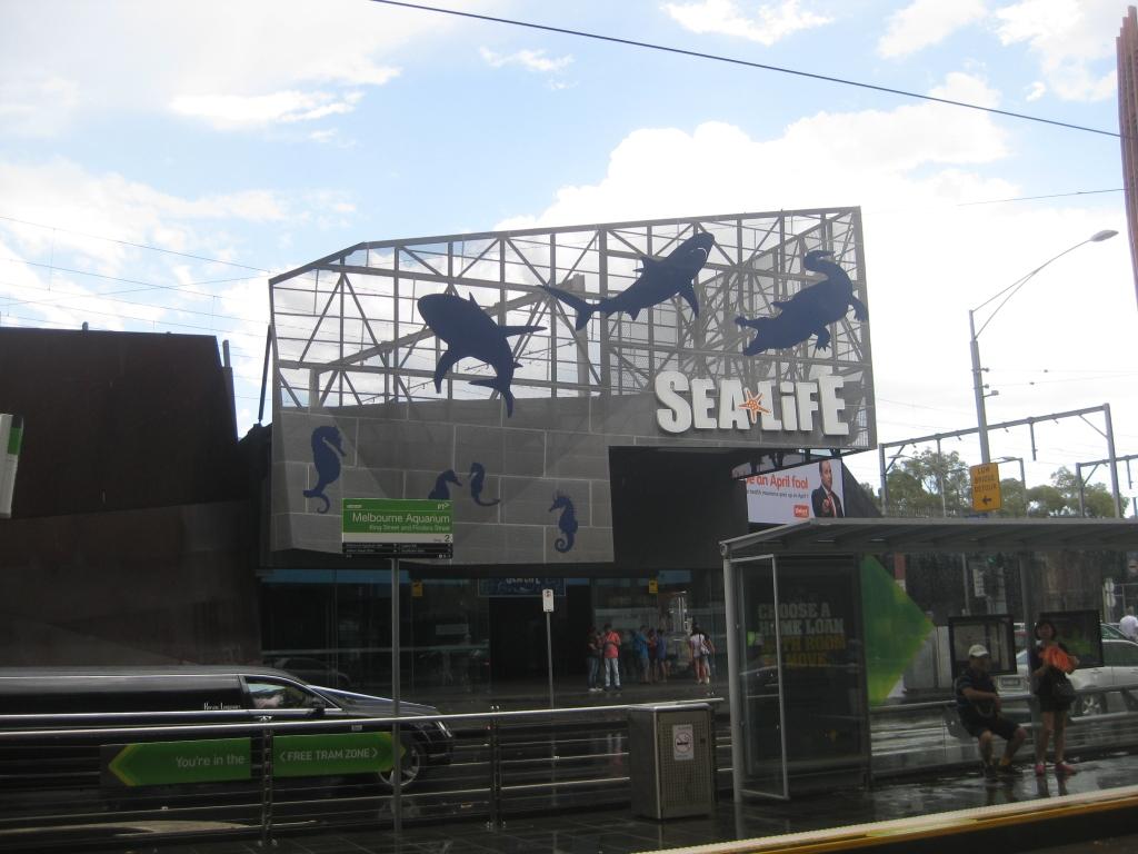 Sea Life Melbourne