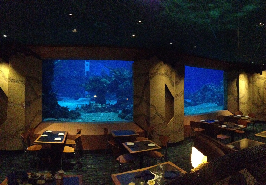 Don't forget to have a meal at the Coral Reef!