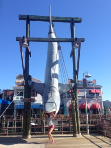 The Jaws ride doesn't exist anymore but the iconic shark is still there!