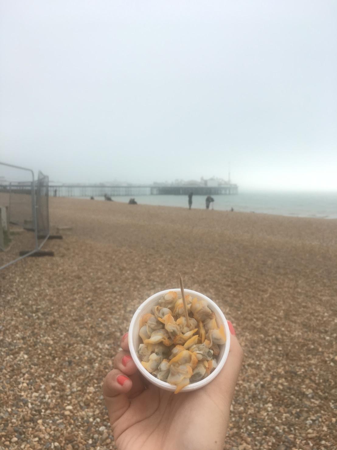 Brighton 60