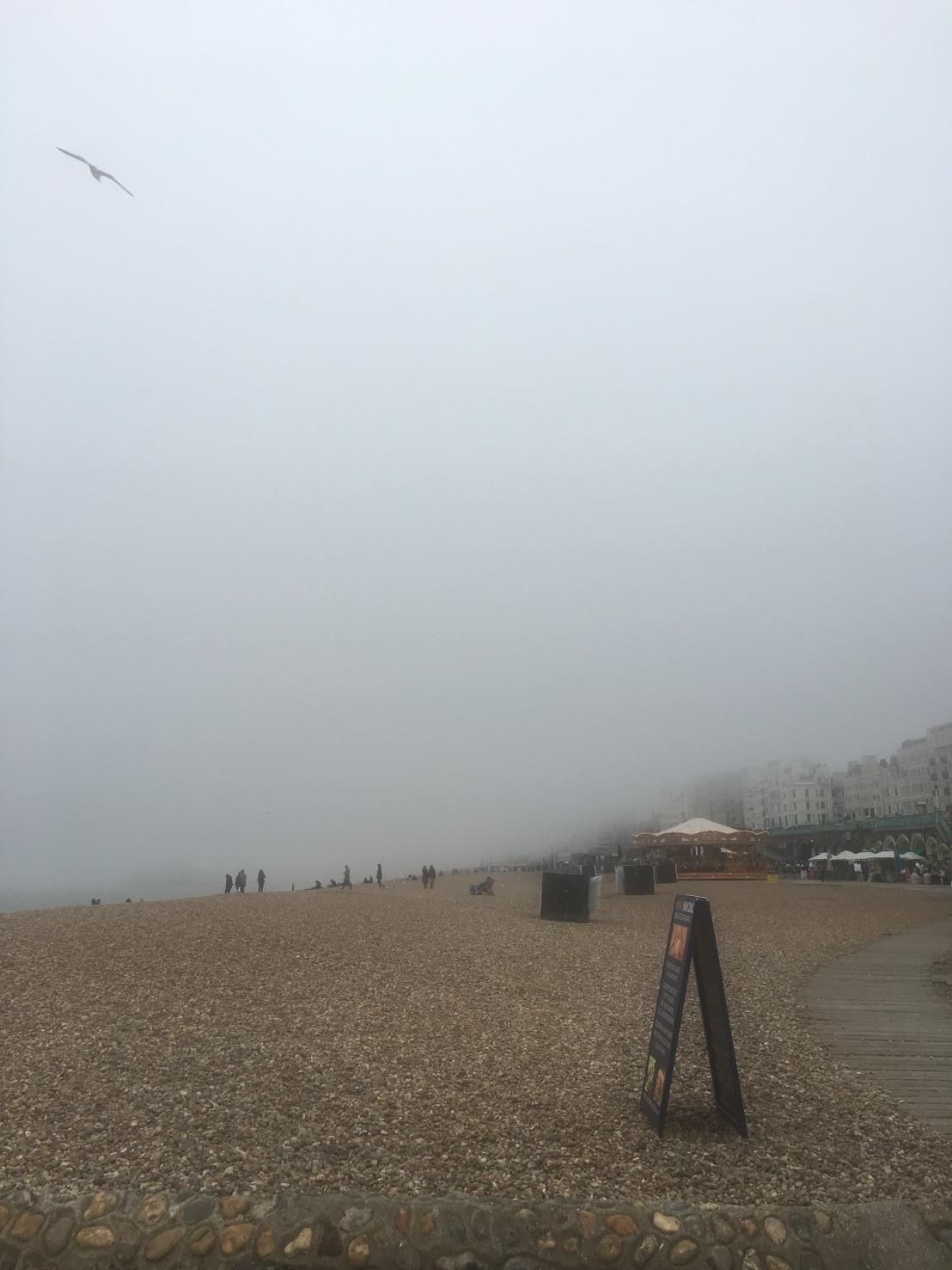 Brighton 61