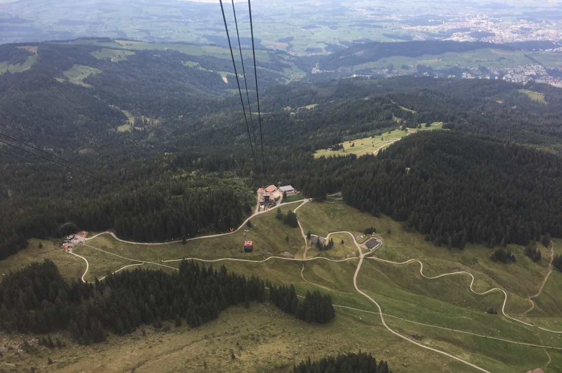 what it's like to go tobogganing down a mountain inswitzerland