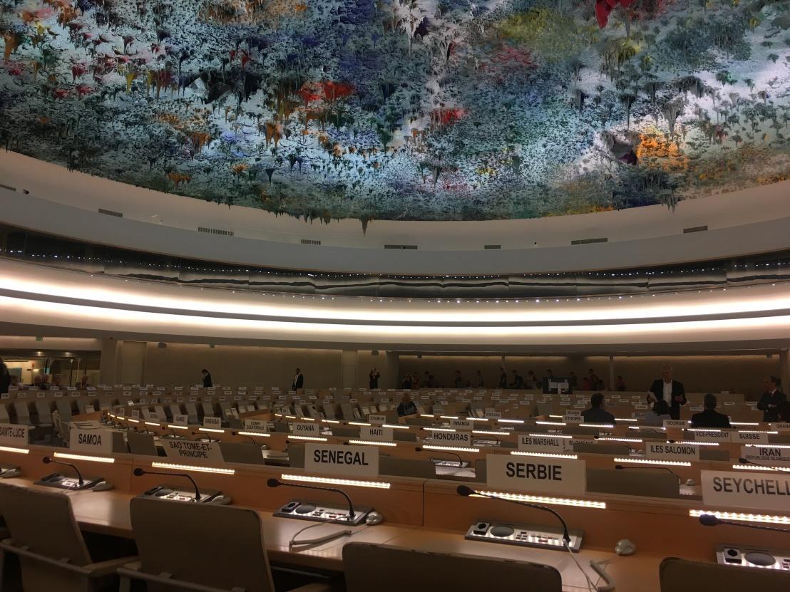 United Nations 13