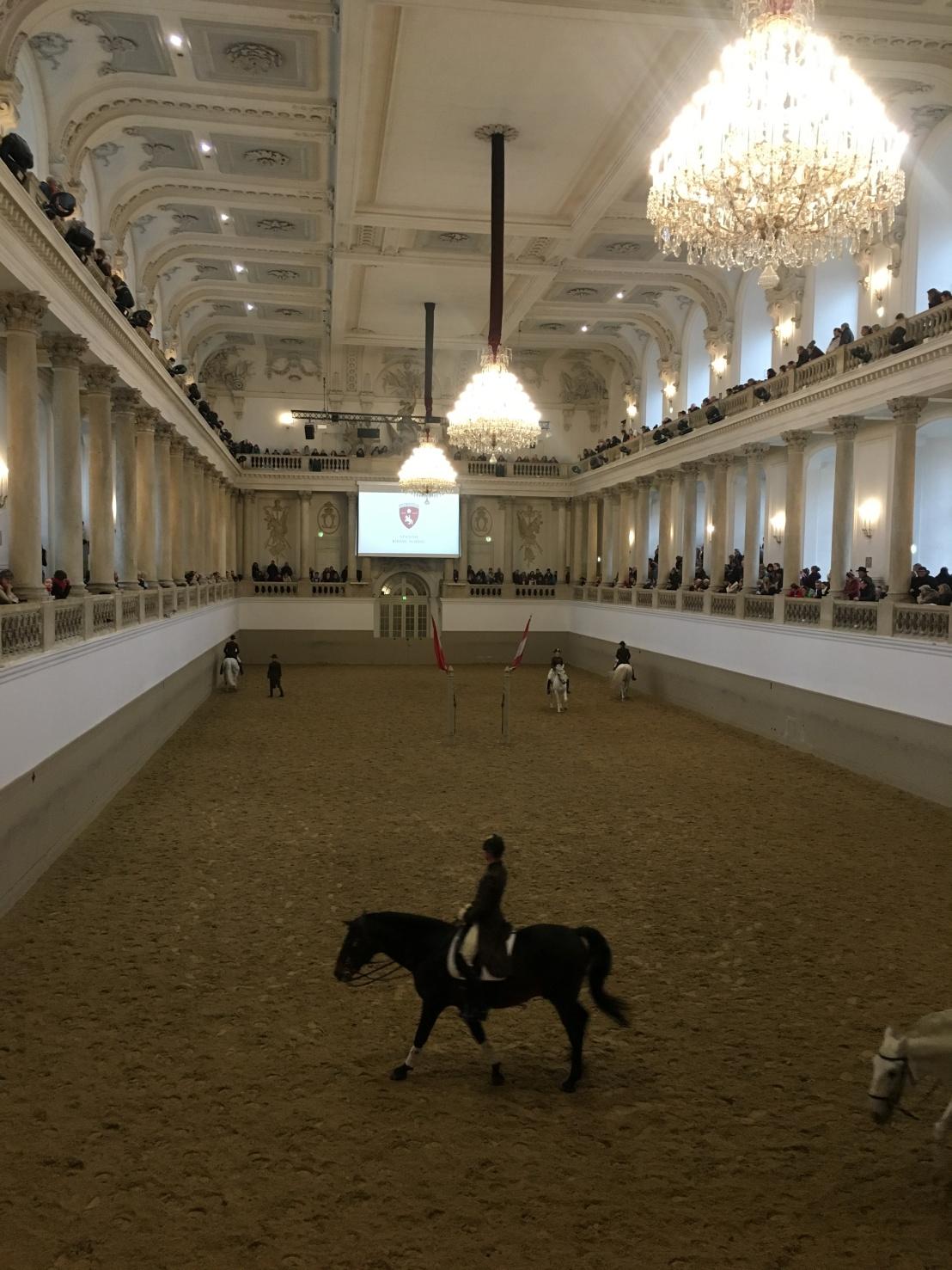 Spanish Riding School:Hofburg 12