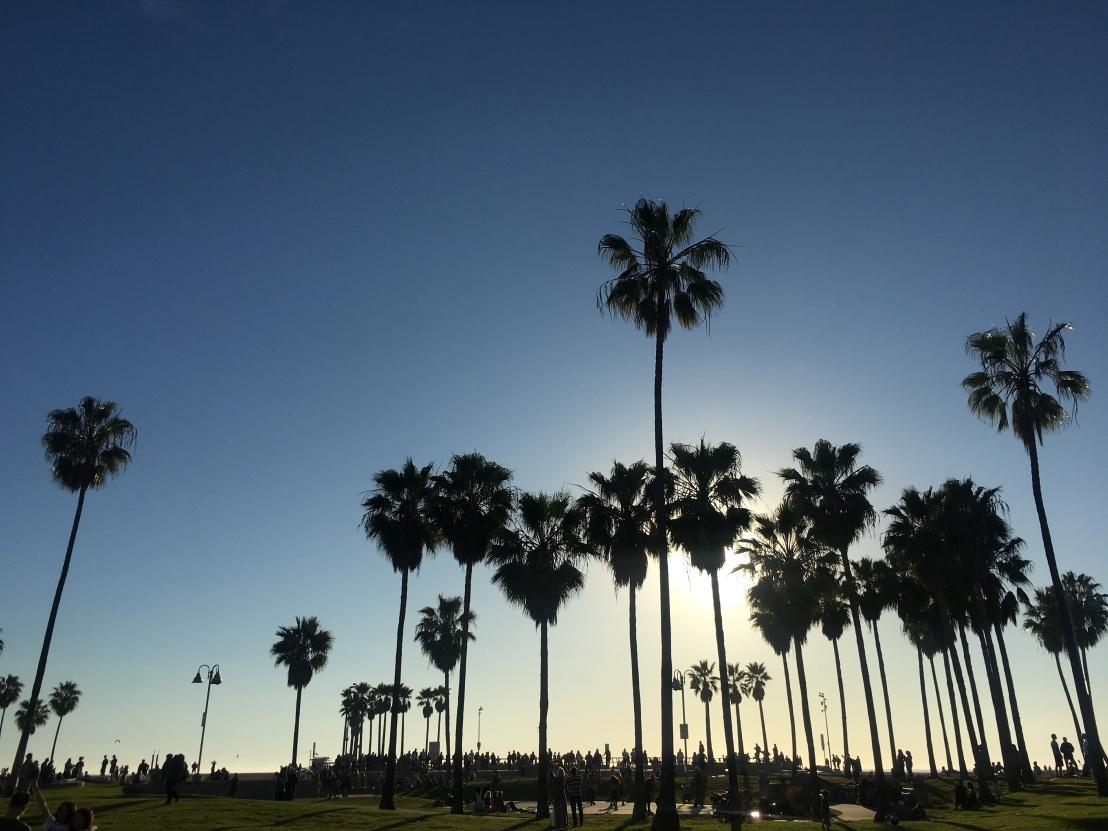 Beverly Hills, Santa Monica, LACMA 72
