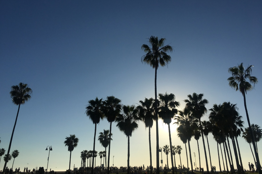 how to be a tourist in losangeles