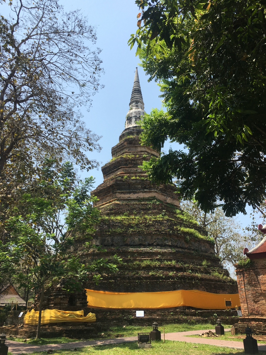 Thawee Hot Springs:White Temple:Wat Chedi Luang:Golden Triangle 83