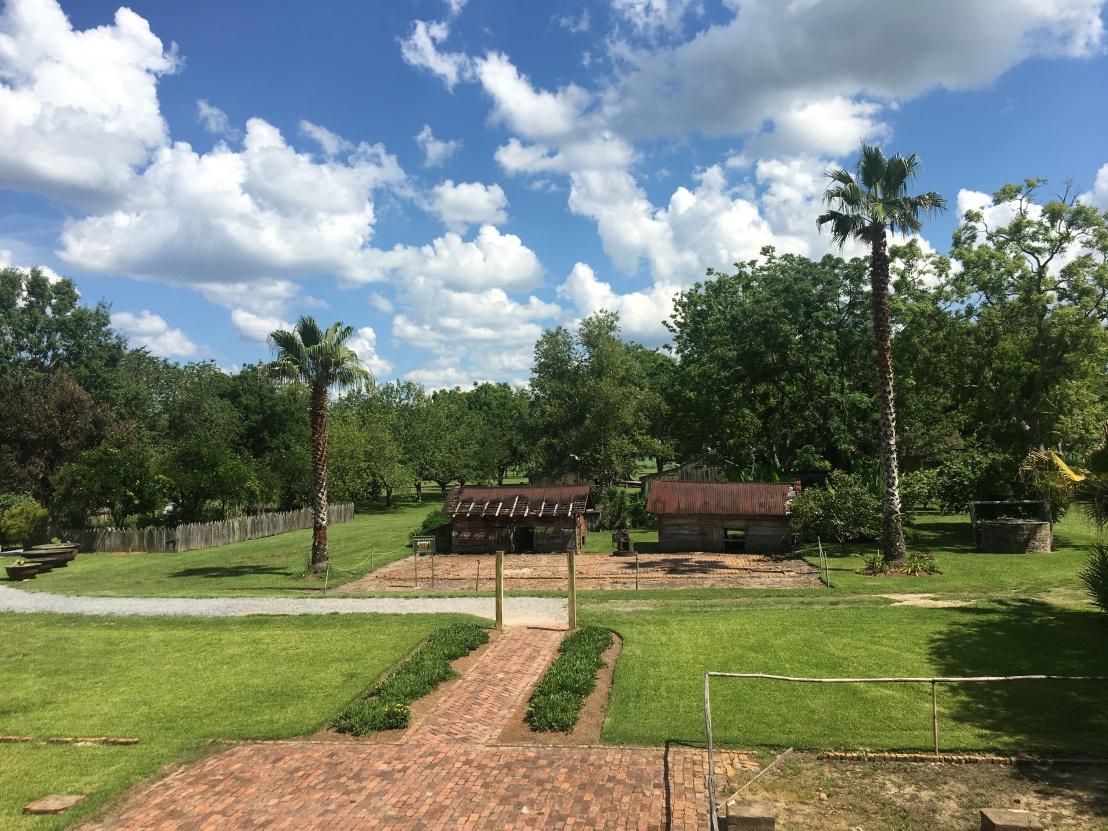 laura plantation 6