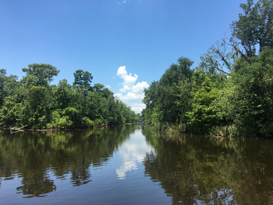 swamp tour 42