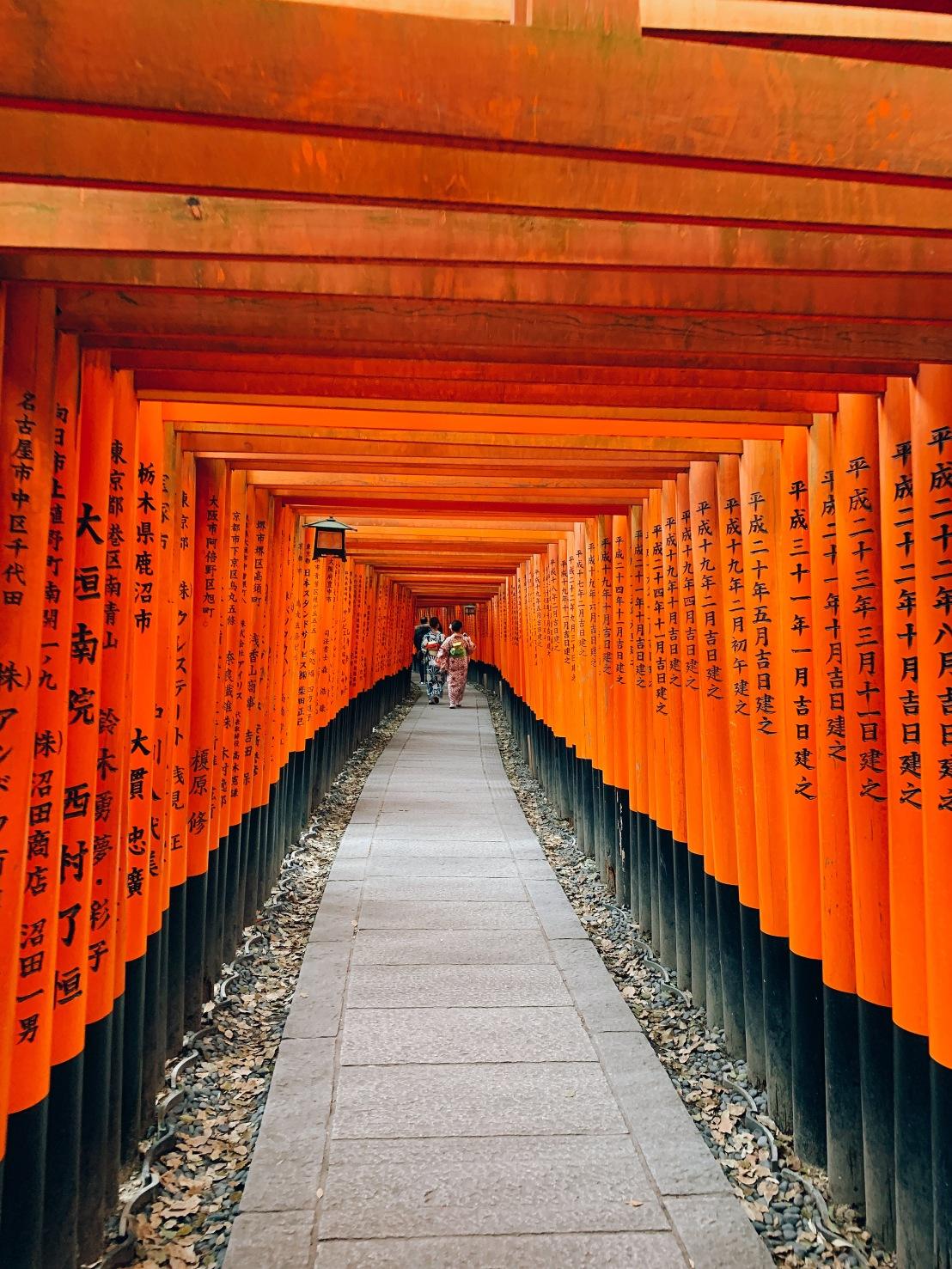 Fushimi Inari 40