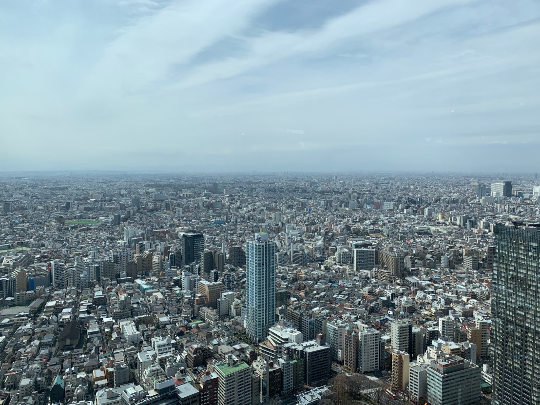 Tokyo Government Building 5