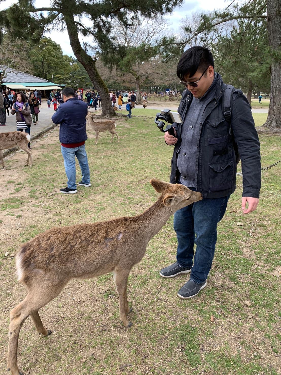 Nara Park 35