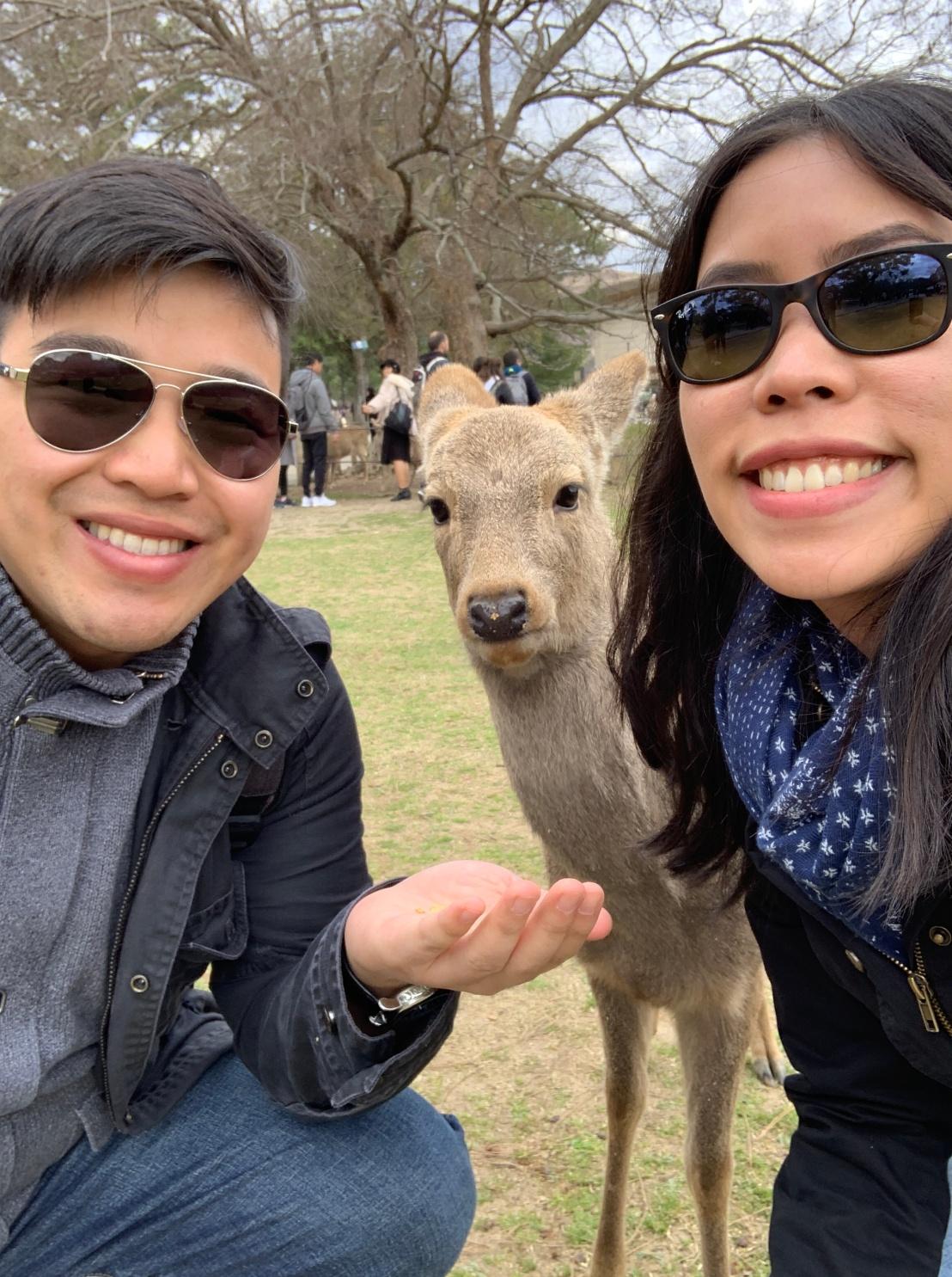 Nara Park 67