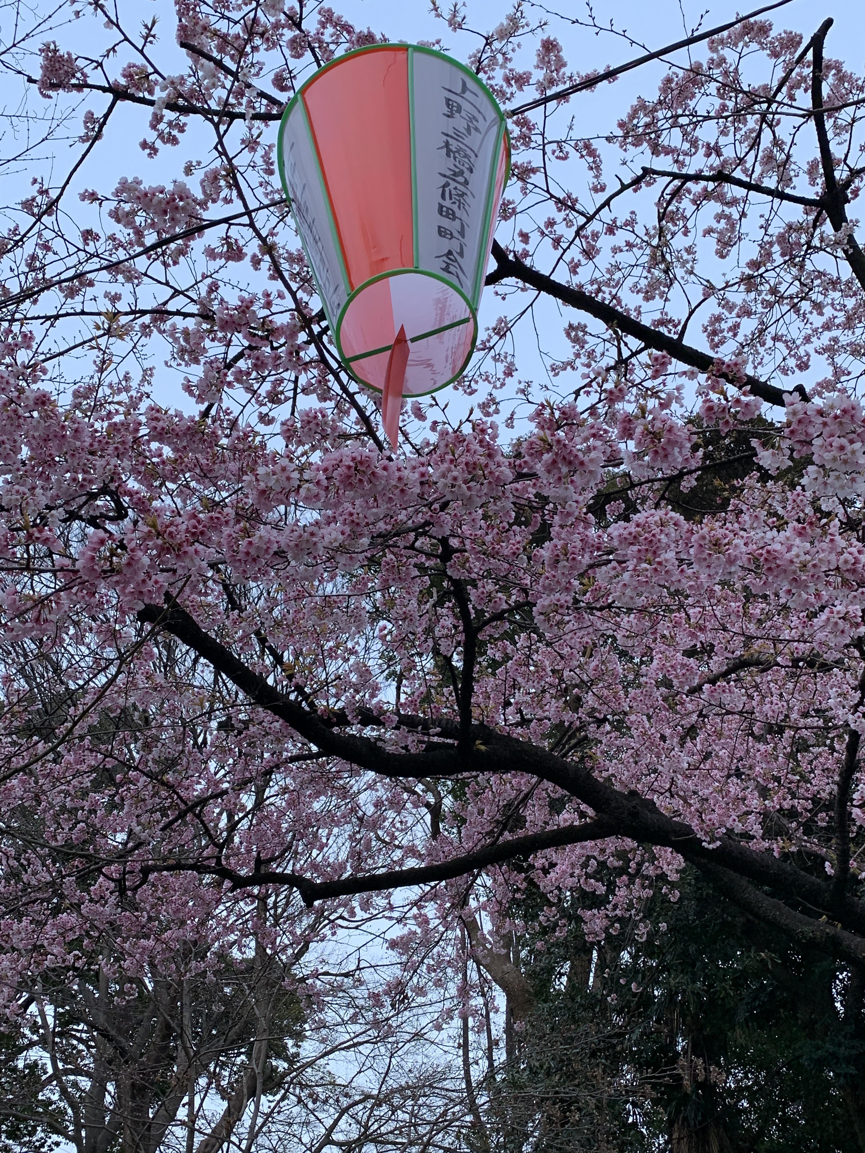 Ueno Park 1.JPG