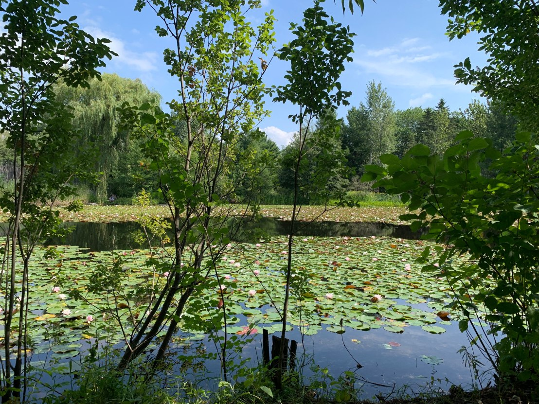 Montreal Botanic Gardens 23