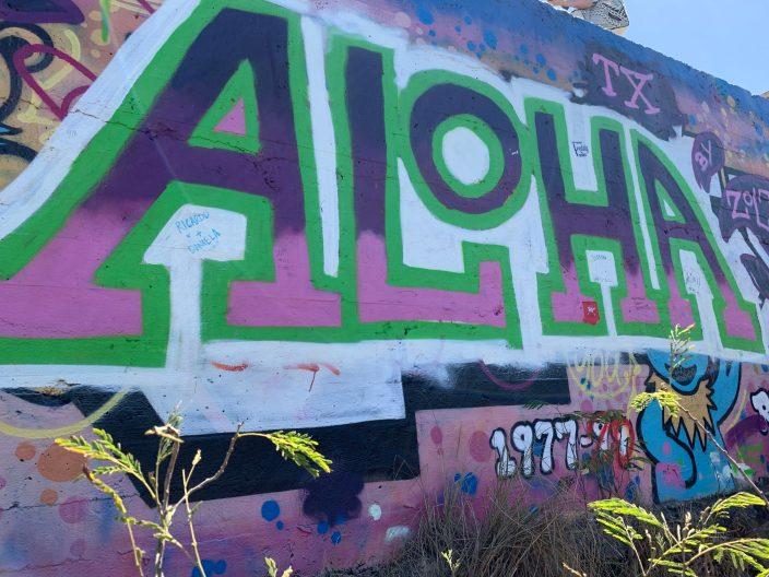Art/graffiti on the pillboxes